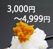 kakakubetu3000-